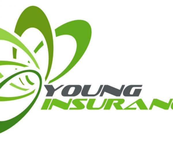 Young Insurance logo