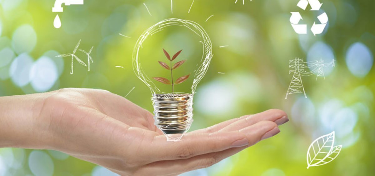 the concept of a using LED bulbs to go green in thouse